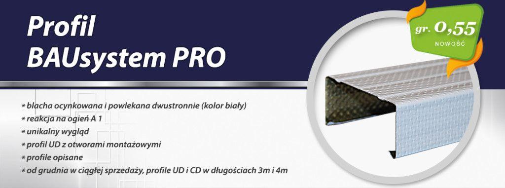 Profil-BAUsystem-PRO-55mm